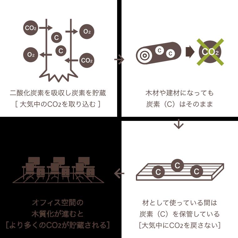 二酸化炭素を吸収し炭素を貯蔵[ 大気中のCO2を取り込む ] → 木材や建材になっても炭素(C)はそのまま → 材として使っている間は炭素(C)を保管している[大気中にCO2を戻さない] → オフィス空間の木質化が進むと[より多くのCO2が貯蔵される]